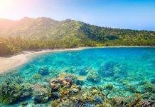 Tempat Wisata di Lombok yang Indahnya Tak Tertandingi