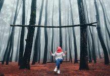 hutan-pinus-mangunan-wisata-alam-jogja