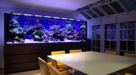 cara memilih besar pompa air untuk aquarium