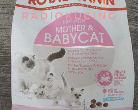 royal canin makanan kucing yang bagus untuk bulu